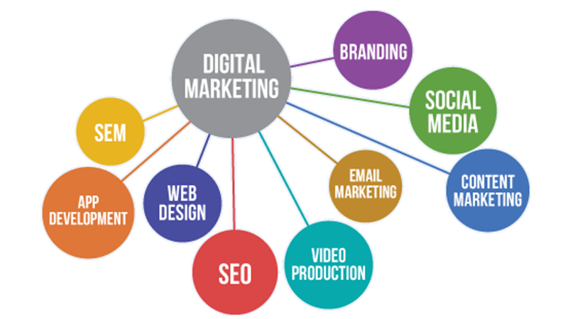 Digital Marketing Strategies That Is Useful For Your Company